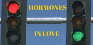 Hormones in Love